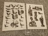 1911 Народные Игрушки , Альбом, фото №7
