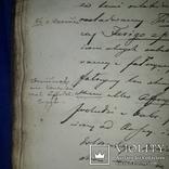 1839 Рукопись ботаника-флориста Станислава Гоского, фото №8