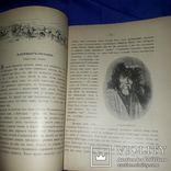 1914 Сказки русских инородцев, фото №4