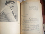 Русская литература 20 век (Дореволюционный период) 1966р., фото №6