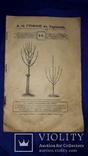 1900 Каталог садоводства А.К.Гринке в Харькове, фото №2
