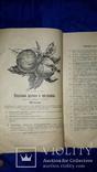 1900 Каталог садоводства А.К.Гринке в Харькове, фото №3