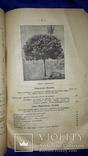 1900 Каталог садоводства А.К.Гринке в Харькове, фото №9