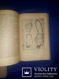 1937 История древней Греции, фото №5