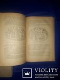 1937 История древней Греции, фото №8