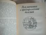 Популярно о питании 1989р., фото №5