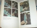 Сад Едема (пошуки предка людини) Москва 1980р., фото №5