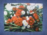 Открытки цветы, фото №6