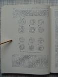 Древние монеты Таджикистана. Е.В. Зеймаль, фото №9