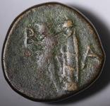 Македонське царство, Антигон ІІ Гонат, 274(3)-229 до н.е. photo 3