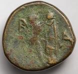 Македонське царство, Антигон ІІ Гонат, 274(3)-229 до н.е. photo 4