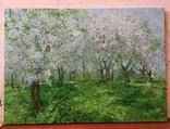 """ Цветущий сад "". С.Берестов. Холст, масло. photo 2"
