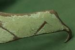 Серп, срубной культуры photo 8