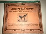Безпорочная Лошадь Огромного формата 35/29 до 1917 года