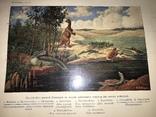 1914 Динозавры Геология Шикарное Издание