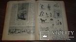 Журнал Природа и люди. 1913 г., фото №10
