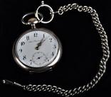 Швейцарские карманные часы Adam Präzisionsuhr Cеребро 800 (18)