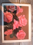 Открытка Розы, фото №2