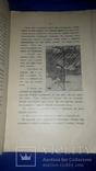 1928 Сказка - Маленькие японцы 26.5х17.5 photo 2
