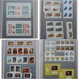 Колекція марок (437 штук) photo 6