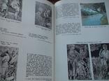 """Леся Українка """"Життя і творчість у документах, фотографіях, ілюстраціях"""" 1979р., фото №6"""