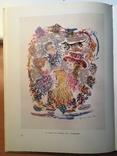 Терешкович Константин ,цветная литография 1949г. photo 8