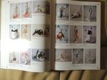 Книга Советский коллекционный фарфор (Оригинал) photo 3