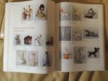 Книга Советский коллекционный фарфор (Оригинал) photo 10