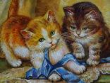 «Забавные котята» photo 2