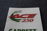 Наклейки Garrett ACE 250 photo 3