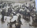 И.М.Прянишниковъ Спасов день на севъръ чистая, фото №5