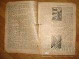 """Журнал """"Всемирная Новь"""" + """"Сад, птицы и комнатное цветоводство"""", № 16, 1911 год, фото №3"""