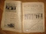 """Журнал """"Всемирная Новь"""" + """"Сад, птицы и комнатное цветоводство"""", № 16, 1911 год, фото №4"""
