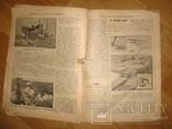 """Журнал """"Всемирная Новь"""" + """"Сад, птицы и комнатное цветоводство"""", № 16, 1911 год, фото №7"""