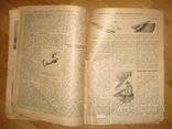 """Журнал """"Всемирная Новь"""" + """"Сад, птицы и комнатное цветоводство"""", № 16, 1911 год, фото №9"""