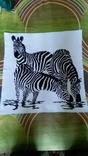 Зебры на водопое.