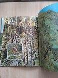 Шовкова косиця (фотоальбом про Карпати) 1985р., фото №6
