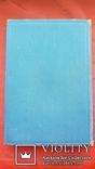 Є.Чикаленко. Щоденник. 1907-1917 рр. Львів . 1931 р., фото №11