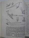 Древние и средневековые пахотные орудия Восточной Европы, тираж 1 200, фото №8