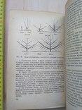 Спутник садовода 1969р., фото №9