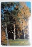 Запчастьэкспорт 83 г. пластик., фото №2