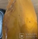 Пепельница из натурального прибалтийского янтаря - 357 грамм photo 10