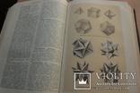 Українська Радянська Енциклопедія  1959року 16 томов, фото №5