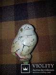 Цыпленок, фото №2