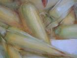 """Голубятникова Я.В. """"Кукуруза"""" 120см х 80см., фото №4"""
