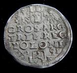 Трояк 1591 р photo 6