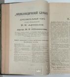 Энциклопедический словарь Брокгауза и Ефрона  3 дополнительный том, фото №7