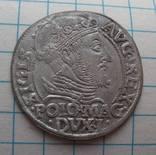 Грош 1548 года Вильно Сигизмунд II Август photo 2