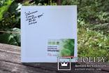 Картина акрилом для дитячої кімнати. Сад біля озера. (30х30см) С. Смаль photo 5