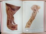 Реальная энциклопедия практической медицины. Том 3, фото №10
